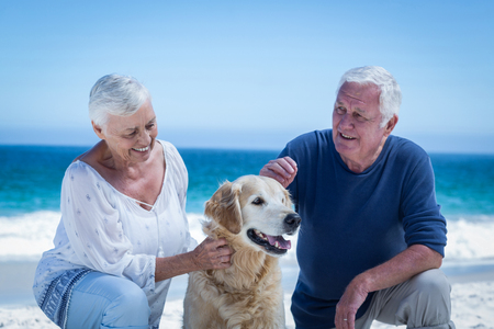 petting: Cute mature couple petting their dog on the beach Stock Photo