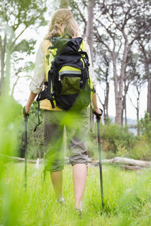 adventuring: Woman nordic walking in the countryside