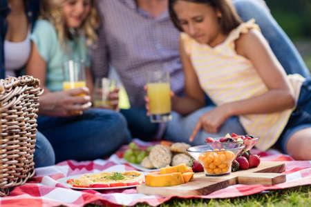 weekend activity: Family having a picnic in the garden LANG_EVOIMAGES