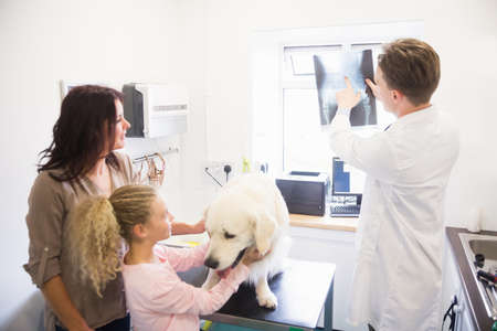 female child: Veterinarian discussing x-ray of dog with its owner in clinic LANG_EVOIMAGES