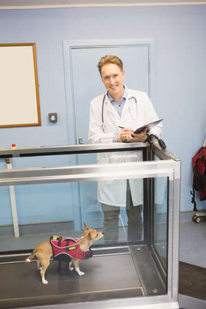 hydrotherapy: Portrait of vet with clipboard and dog on hydrotherapy treadmill in vets clinic