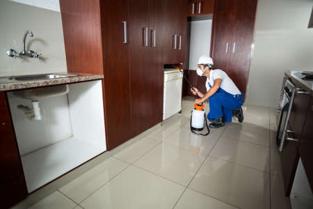 cabinets: Manual worker using pest spray in cabinets of kitchen at home