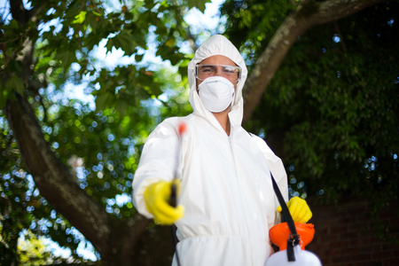 insecticide: Man spraying insecticide while standing against tree in lawn