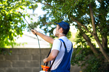 crop sprayer: Rear view of pest control worker standing in back yard Stock Photo