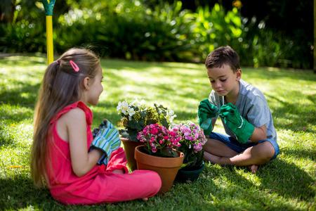 siblings: Siblings sitting with flower pots on grass in yard