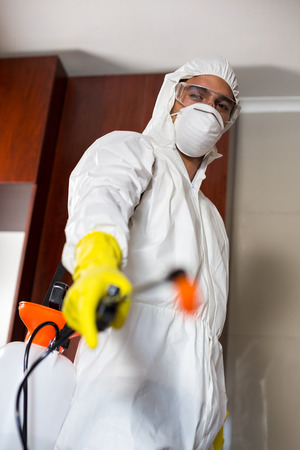 protective eyewear: Low angle portrait of pest worker with sprayer standing in kitchen at home