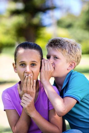 secrete: Boy whispering in his sisters ear in park