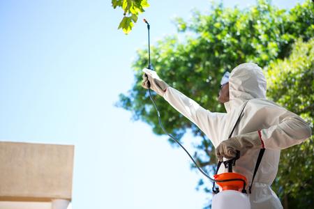 Man doing pest control in the backyard Archivio Fotografico