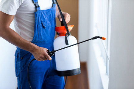 Midsection of pest control worker with sprayer standing at home 스톡 콘텐츠