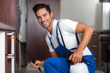 pesticide: Portrait of confident pesticide worker crouching with sprayer at home Stock Photo