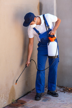crop sprayer: Full length of worker spraying chemical on wall in back yard Stock Photo