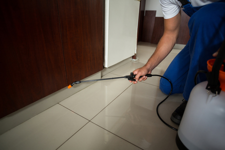 pest control: Low section of man spraying pesticide at home Stock Photo
