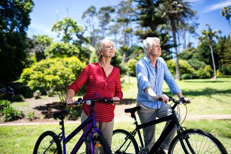 晴れた日に公園で自転車と歩くシニア カップル