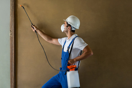 protective wear: Side view of manual worker spraying chemical on wall while wearing protective wear
