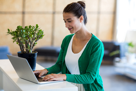 confident business woman: Beautiful woman using laptop at her desk in the office