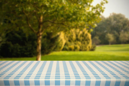 escapism: Part of blue and white tablecloth against trees and meadow Stock Photo