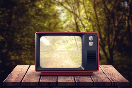 retro tv: Retro tv against path in woods