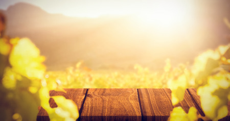 greenness: Wooden table against greenness field of grapevine