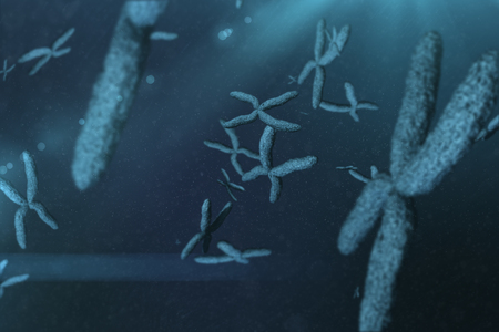 cromosoma: Vista de un cromosoma en fondo azul