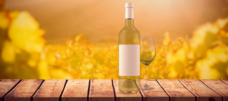 greenness: White wine against greenness field of grapevine Stock Photo