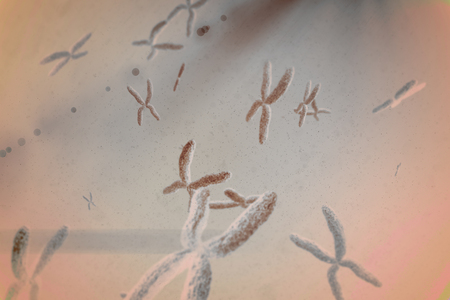 chromosome: View of chromosome against blue background