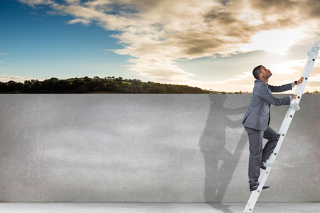 rural development: Businessman climbing up ladder against cloudy sky over countryside