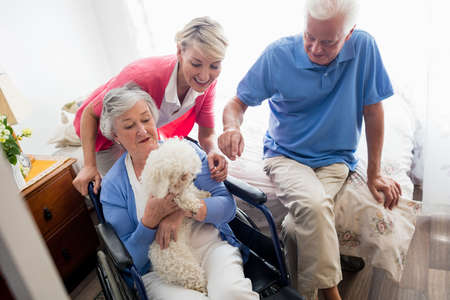 sheltered accommodation: Senior couple and nurse taking care of a dog in a retirement home LANG_EVOIMAGES