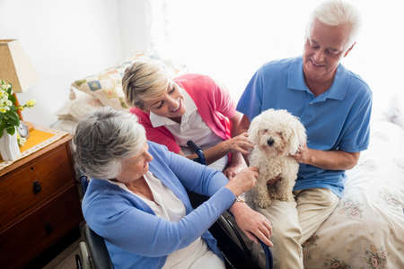 paraplegico: Senior couple and nurse taking care of a dog in a retirement home LANG_EVOIMAGES