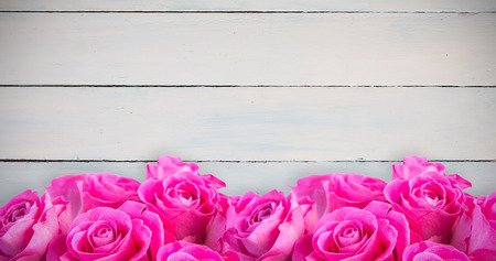 casual business team: Pink flowers against painted blue wooden planks
