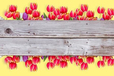 planks: Flowers against wooden planks