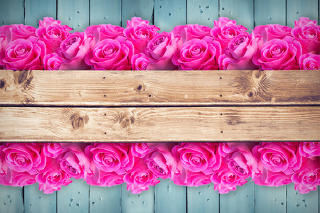 applauding: Pink flowers against wooden planks
