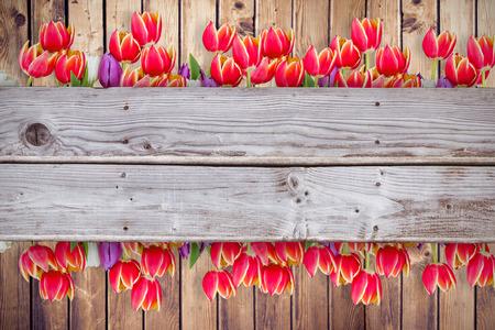 wooden planks: Flowers against wooden planks