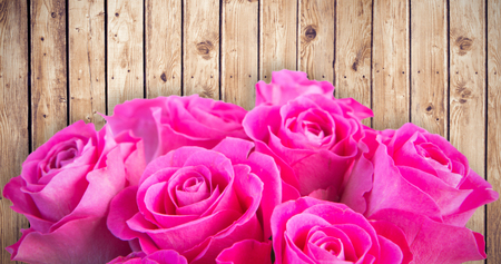 planks: Pink flowers against wooden planks