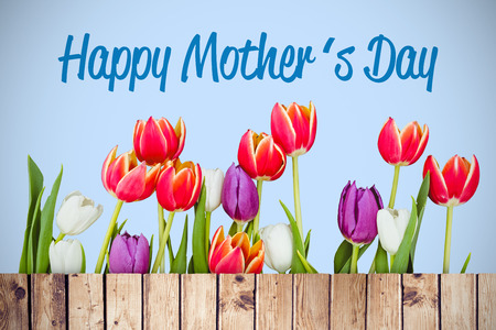 planks: Mothers day greeting against wooden planks Stock Photo