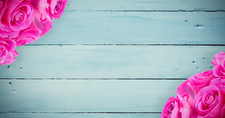 planks: Pink flowers against painted blue wooden planks