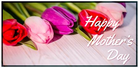 oracion: La condena contra los tulipanes en la tabla