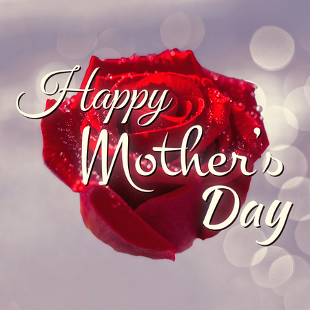neon plant: Happy mothers day message on flower background