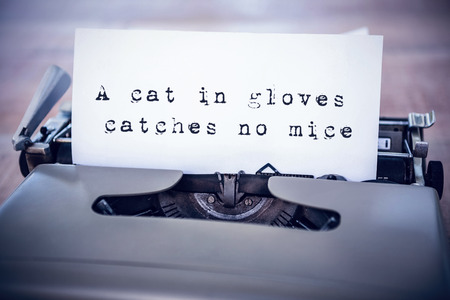 sentence: The sentence a cat in gloves catches no mice against white background against a paper in a printer