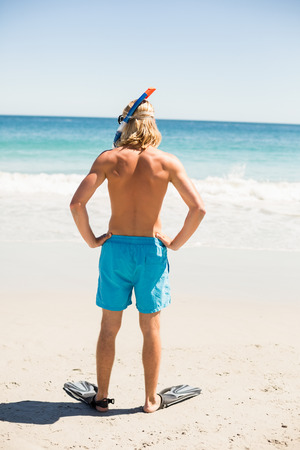 diving mask: Rear view of man wearing diving mask and flippers standing on beach
