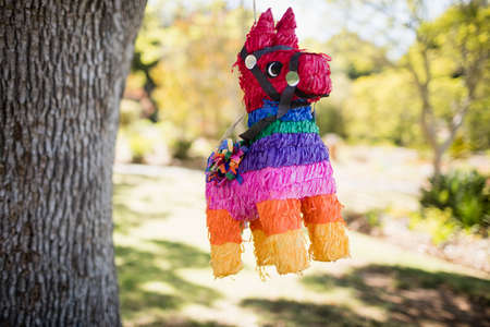 hanged: Portrait of of piñata hanged on a tree on a park LANG_EVOIMAGES