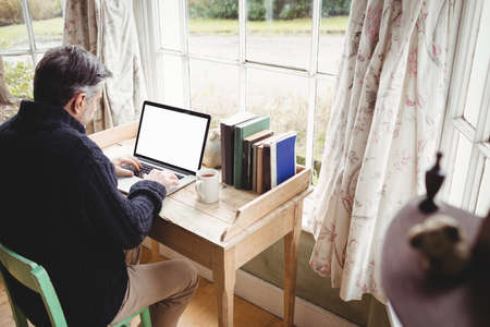 weekend activity: Casual mature man using laptop at home LANG_EVOIMAGES