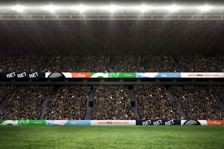 Rugby fans in arena