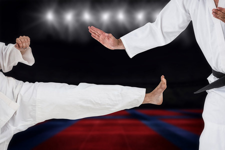 playing field: Fighter performing karate stance against view of a playing field indoor