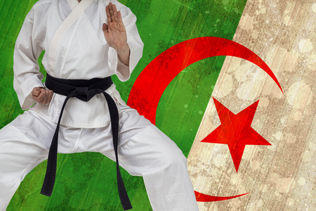 karateka: Fighter performing karate stance against algeria flag in grunge effect