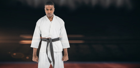 playing field: Portrait of serious karate player against composite image of playing field indoor Stock Photo