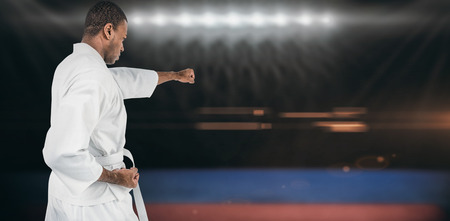 playing field: Fighter performing karate stance against composite image of playing field indoor
