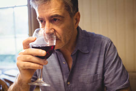 weekend activity: Concentrated mature man tasting red wine in his country house LANG_EVOIMAGES