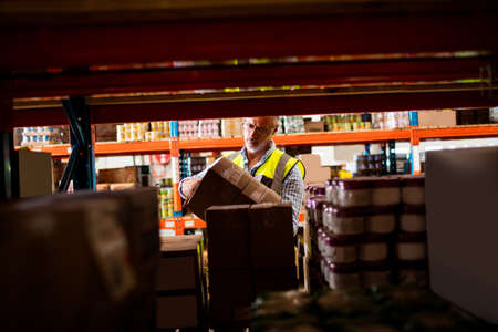 tidying: Warehouse worker tidying the shelves in a warehouse
