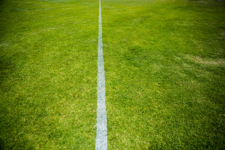 boundary: Boundary line of a playing field in stadium