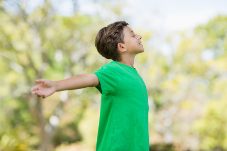 outstretched: Young boy with arms outstretched in park Stock Photo